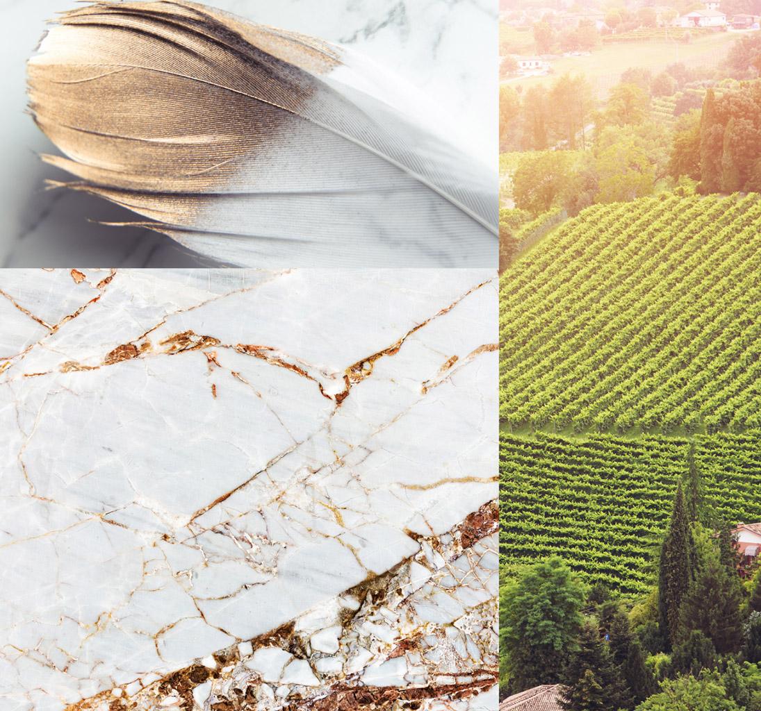 900 wine: moodboard rappresentante lo spirito dei prodotti di 900