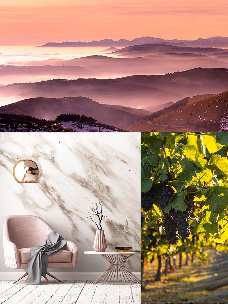 900 wine: composizione rappresentante le caratteristiche dello spumante Rare Rosé